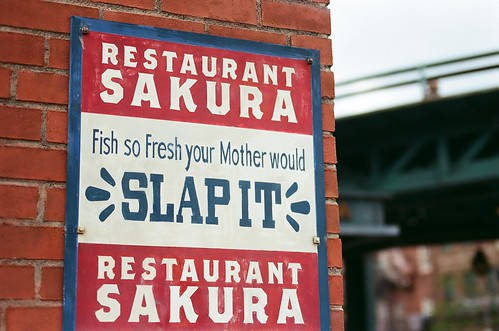 fish so fresh your mother would slap it.