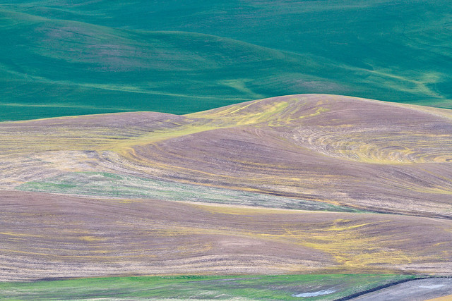 Steptoe Butte II