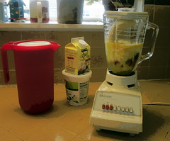 drink(0.0), juice(0.0), kitchen appliance(1.0), food(1.0), blender(1.0), lighting(1.0), small appliance(1.0),