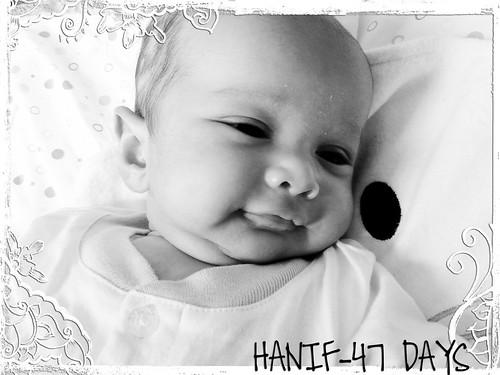hanif-frameBFA3