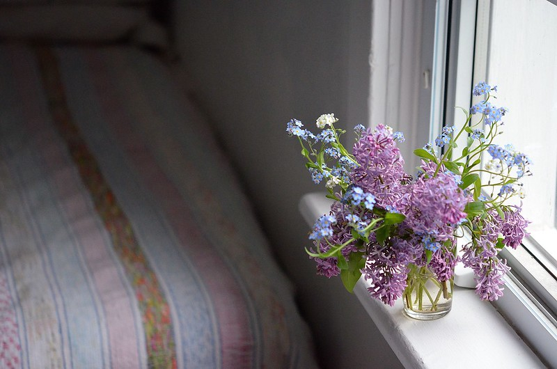 spring flowers_555