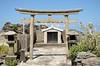 Photo:竜神様 - 東京都神津島村 By mossygajud