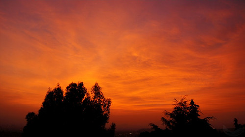 city blue trees red sky orange silhouette azul clouds sunrise mexico intense rojo df arboles horizon amanecer cielo nubes silueta activity neblina volcanic naranja daze horizonte slight actividad volcanica