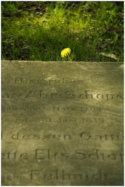 Alter Johannisfriedhof