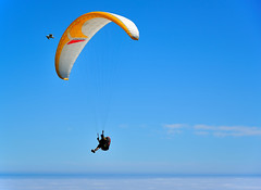 Hang glider chasing a seagull over beachy head