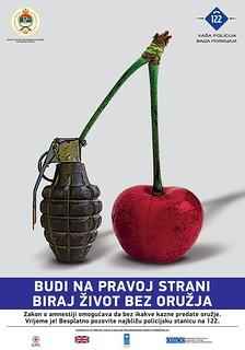 UNDP_SALW_Poster LAT_2013_01