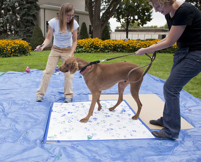 Bark Busters In Home Dog Training Toronto West Etobicoke On