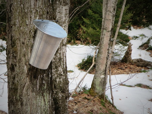 It's still maple sugar season in the central U.P.