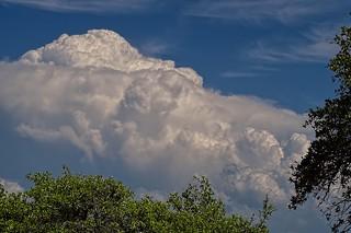 Thunderstorm Brewing