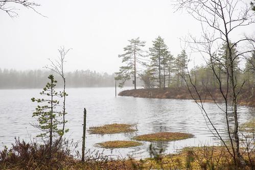 lake suomi finland nationalpark hike kansallispuisto järvi vaellus southernostrobothnia isojoki lauhanvuori