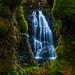 Mossy Falls on the Torpedo Burn by john&mairi