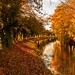 Autumn at the Chesterfield Canal by Freespirit 1950