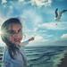 Seagull-Kite flying by John Wilhelm is a photoholic