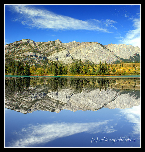Reflect by Nancy Hawkins