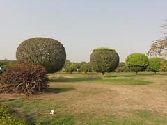 120311_Indien_Ausflug_04