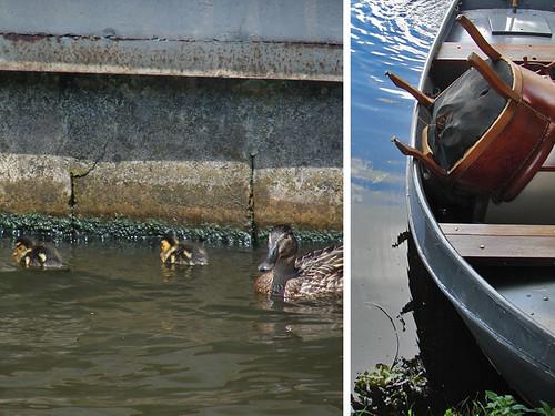 boot-eendjes