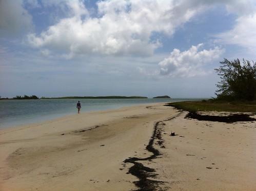 vacation beach turks caicos 2012 turksandcaicos middlecaicos bluehorizonresort