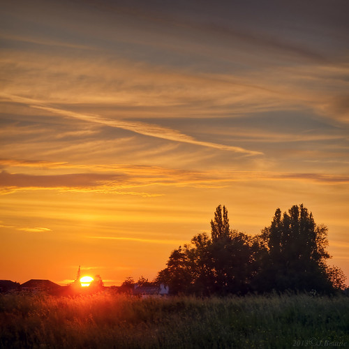 cambridge sunset color colour squareformat cambridgeshire buttercups dittonmeadows
