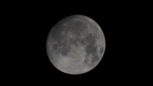 月テレコンなし