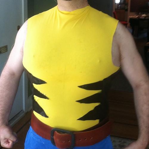 Wolverine Materials Test