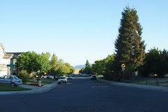 Klaus Naujok posted a photo:	Back to my neighborhood. This is the street view from my front yard, looking east.