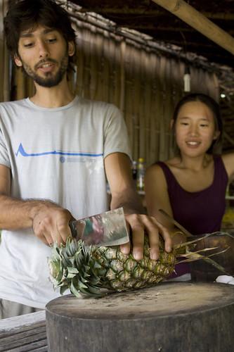 Tacomepai Organic Farm, Pai Thailand 10
