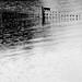 Lakeland rain