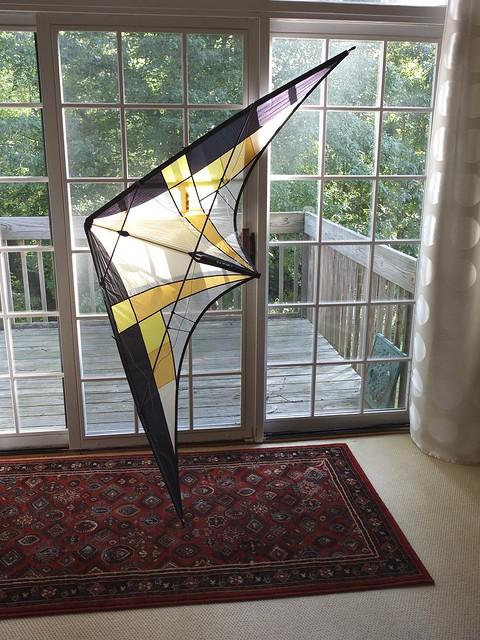 Kites August-0654