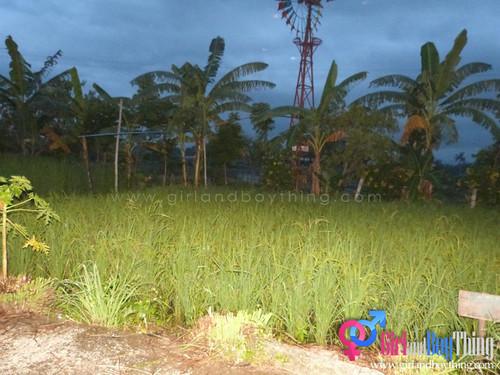 Bacolod-OA-GirlandBoyThing 125
