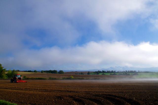 霧のち晴れ2