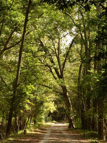 virginia petersburg civilwar petersburgnationalbattlefield