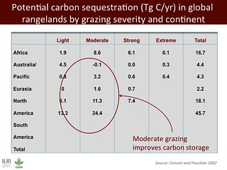 Pootential carbon sequestration in global rangelands