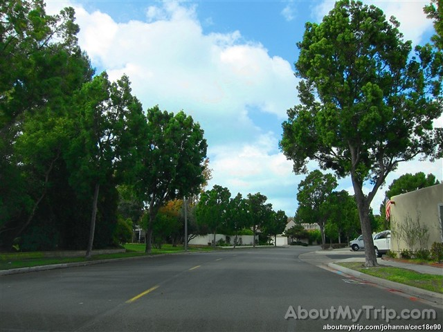 California, Irvine, Orange County, University Park, Irvine, CA