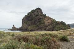 Lion Rock @ Piha Beach