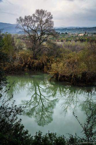 españa tree primavera río river geotagged spring reflejo árbol ebro esp cataluna moradebre 2tumblr sal18250 2blogger geo:lat=4110596500 geo:lon=063437450