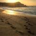 Beach by Monterey, CA by slide16dennis