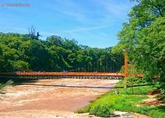 Ponte pênsil sobre o Rio Piracicaba em domingo ensolarado.  #crmacedonio.com #riopiracicaba #piracicaba #turismo #tourism #viajemais #fotografia #fotografemelhor #natureza #water #pontepensil #árvores #brasil #azulmagazine:airplane::blue_heart: