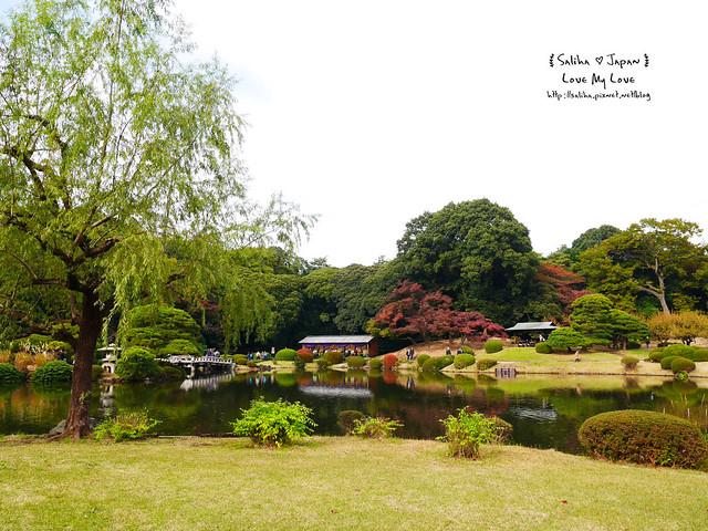 日本東京自由行新宿御苑庭園景點 (16)