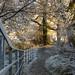 Winter Wonderland Stirling by pshunter93