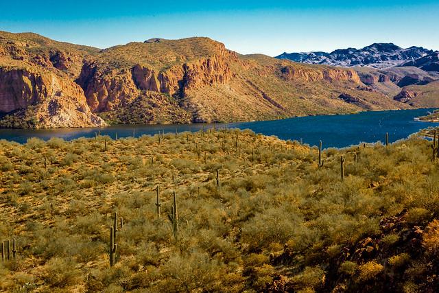 Superstition Desert 2016 (123 of 198)