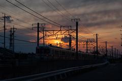 [免费图片素材] 交通, 鐵路列車, 日出・日落, 景观 - 日本 ID:201204140000