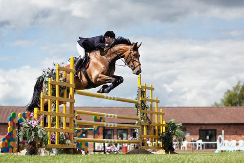 19/52: Show Jumping