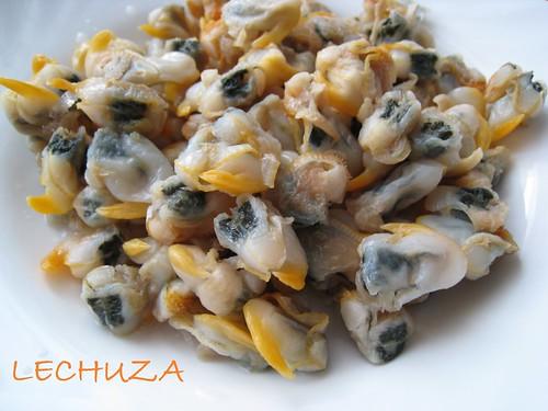 Empanada millo-Bacalao y berberechos (2)