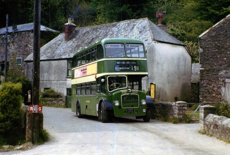 1951 - WESTERN NATIONAL - 503 BTA