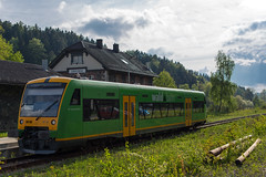 Waldbahn in Grafenau