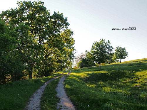 Where my path leads me