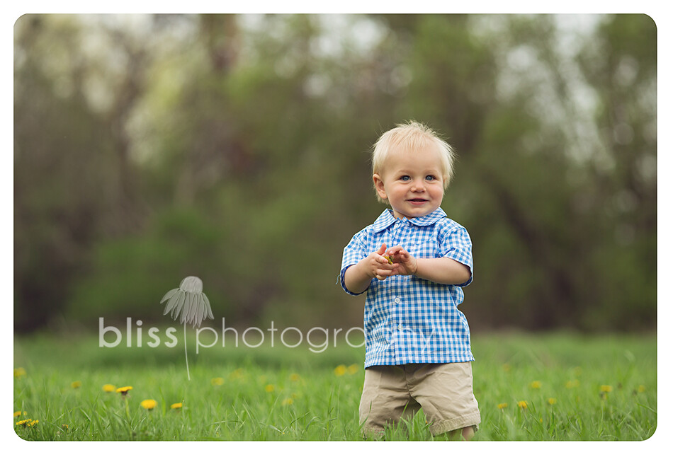 boy in flowers bliss photography-4126