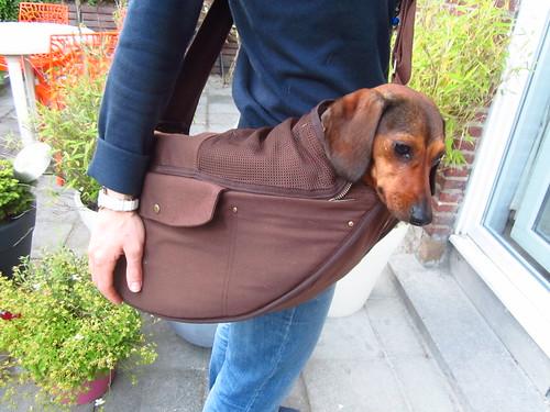 Fourchette dans un sac