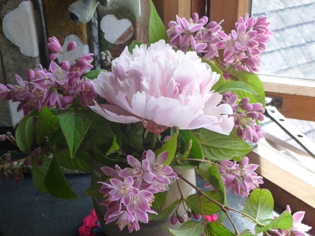 Deutzia Longifolia (just looked that up!) and a peony from the garden
