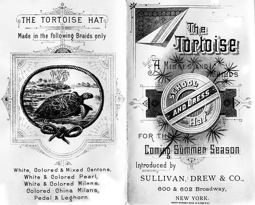 Tortoise School & Dress Hats, New York by JFGryphon